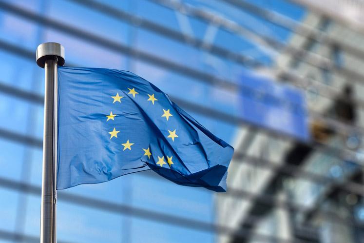 Model European Parliament (MEP)
